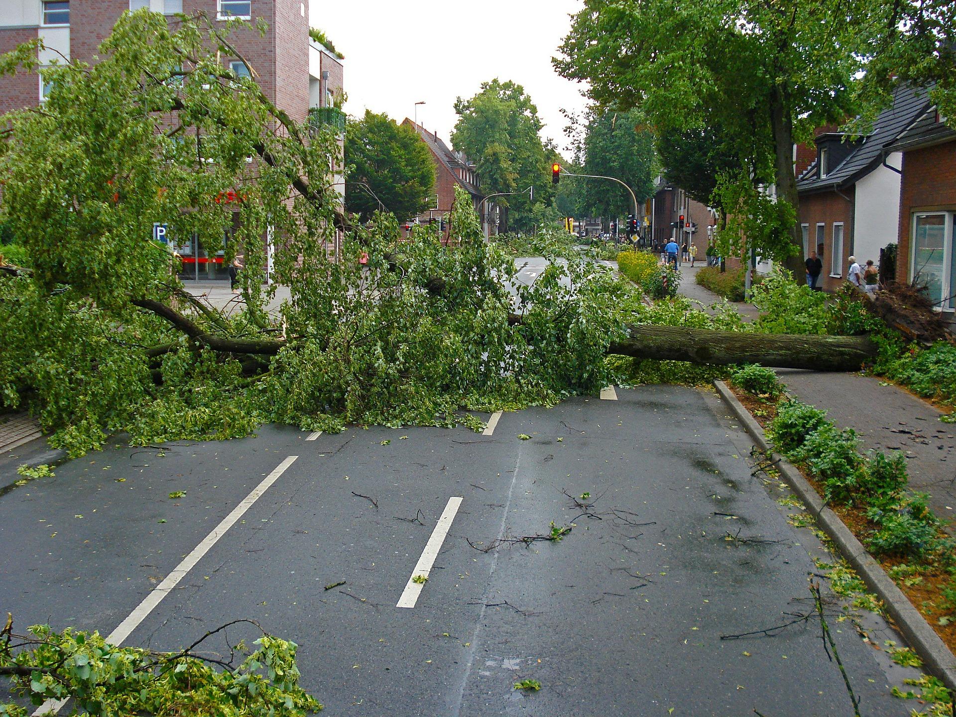 Tief EUGEN sorgt am Dienstag für kräftigen Mai-Sturm